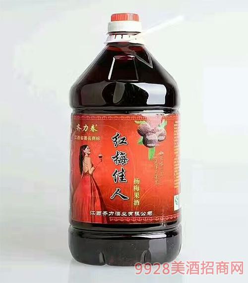 江西齐力春红梅佳人杨梅果酒10斤装