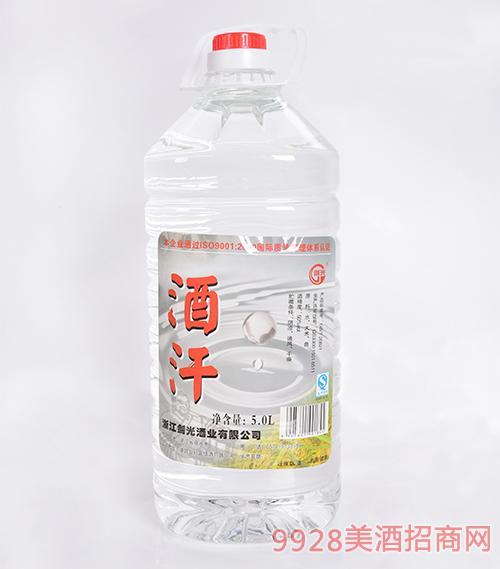 浙江剑光酒酒汗清香型50度5L