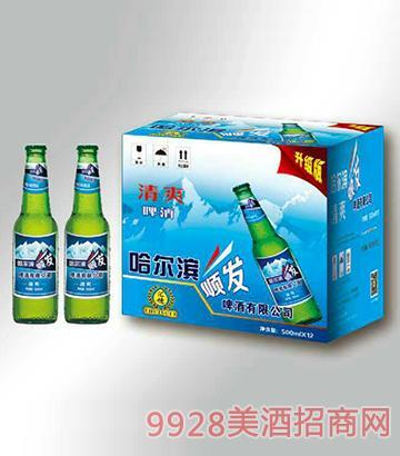 清爽啤酒箱装500mlx12瓶