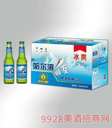 冰爽啤酒箱装330mlx24瓶