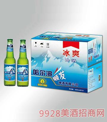 冰爽啤酒箱装500mlx12