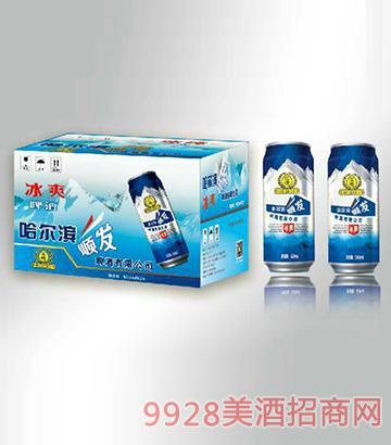 冰纯啤酒箱装330mlx24