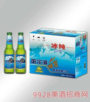 冰纯啤酒箱装500mlx12