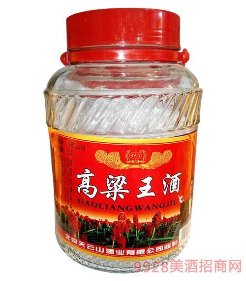 玄武�T高粱王酒50度5L