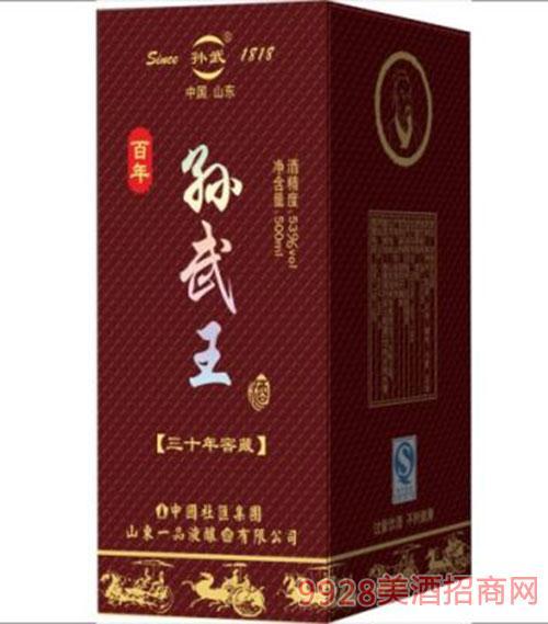百年孙武王酒53度500ml