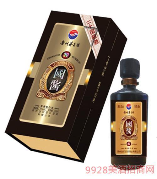 国酱酒二十年陈酿53度500ml