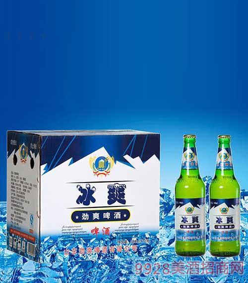 冰爽啤酒500ml