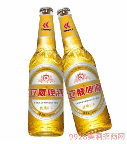 立威啤酒优质8度500ml×12