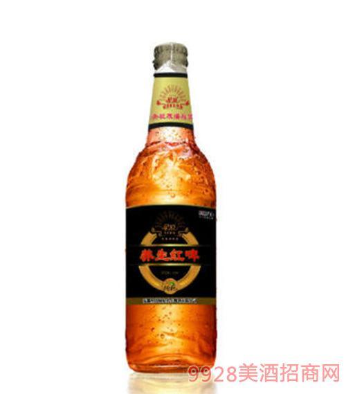 星浪枸杞养生红啤330ml瓶装