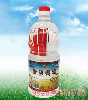 青稞窖酒散裝酒