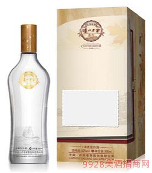 瀘州老窖聚會個性定制酒06款B