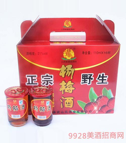 杨梅酒12度110mlx16杯