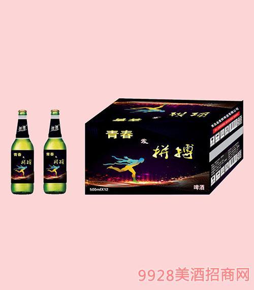 拼搏青春啤酒500mlX12