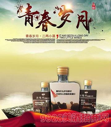 浏阳河青春岁月小酒42度100ml