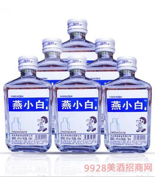 燕小白青春小酒(多)