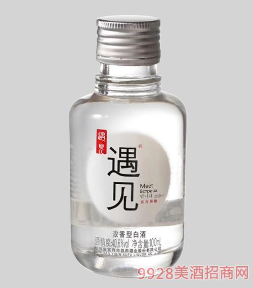 遇见小酒瓶装浓香型40.6度500ml
