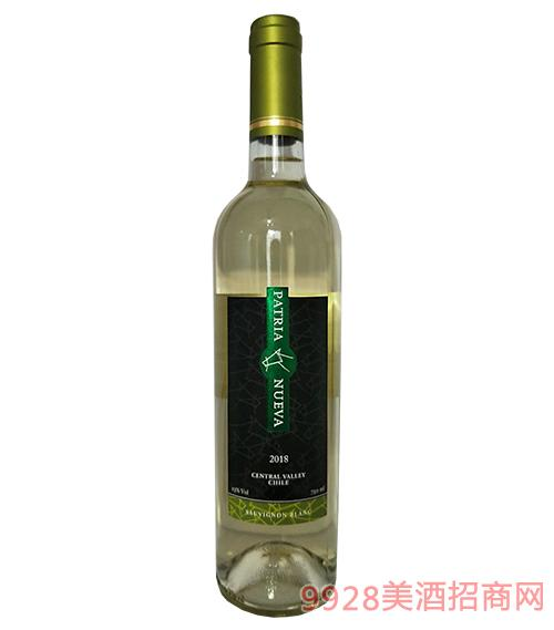 智利帕杰尼长相思干白葡萄酒