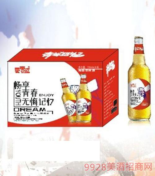 青春记忆红瓶啤酒500mlx12