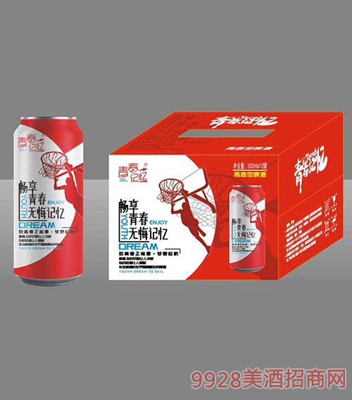 青春记忆红罐啤酒500mlx12