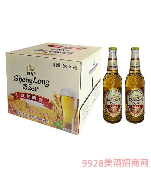 胜龙金麦啤酒500ml×12瓶