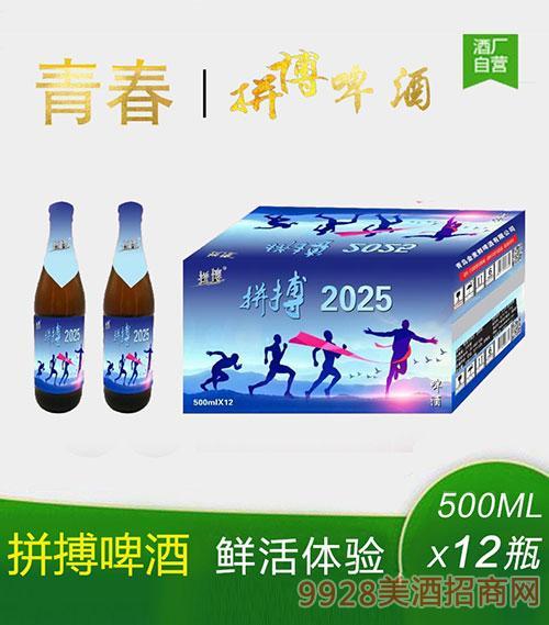 拼搏2025啤酒500mlx12