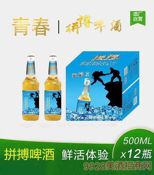 青春拼搏啤酒500mlx12