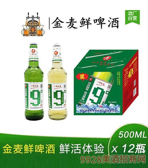 金麦鲜啤酒9度500mlx12