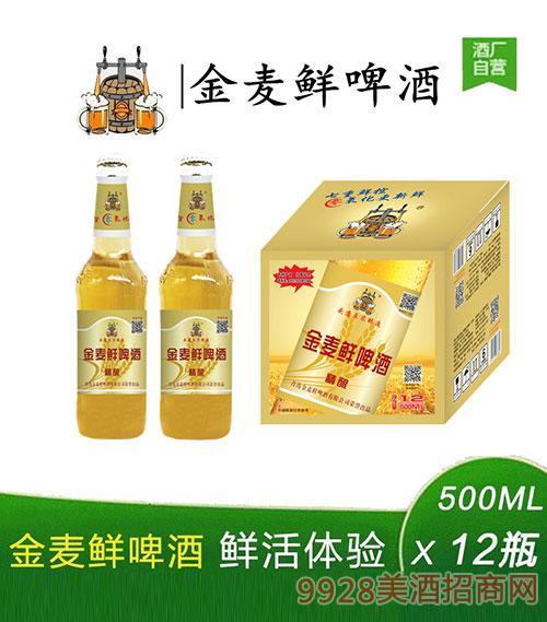 金麦鲜啤酒黄瓶500mlx12