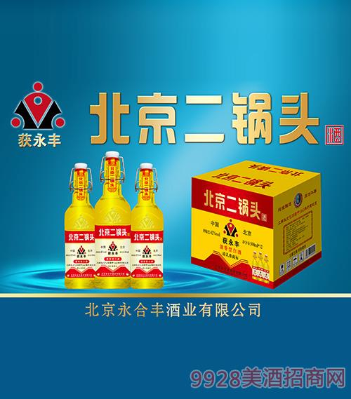 獲永豐北京二鍋頭酒42度52度500ml