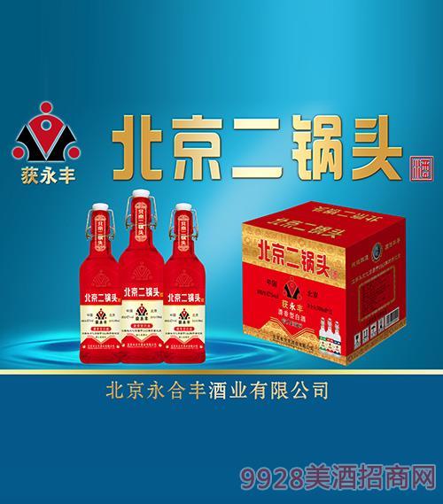 獲永豐北京二鍋頭酒42度52度500ml紅瓶