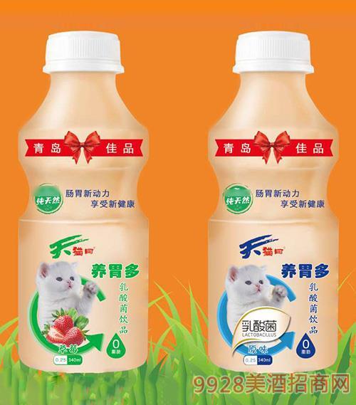 养胃多乳酸菌饮品340ml