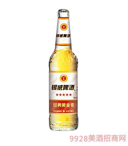 银威啤酒500ml经典黄金麦
