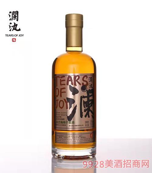 瀾汍·白蘭地梅子酒 750ml