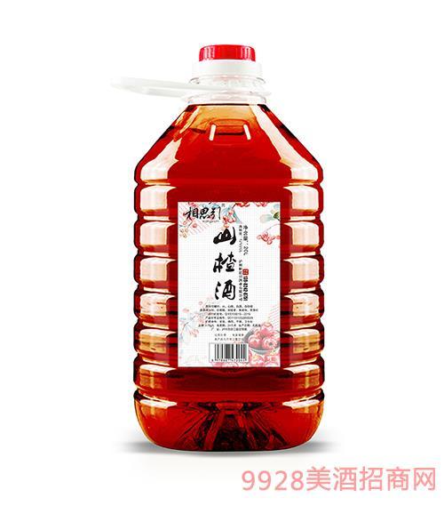 山楂酒20L