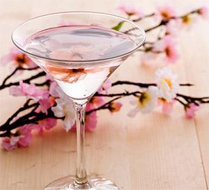 花果酒加盟