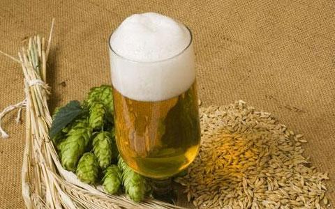 中国啤酒:只有自己能打败自己!