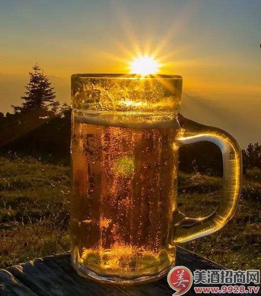 青岛啤酒皮尔森