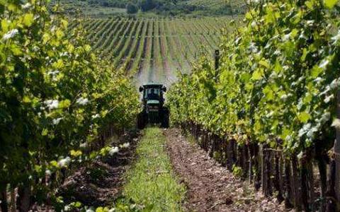 香港新华集团在银川签订建设葡萄酒特色小镇合作协议