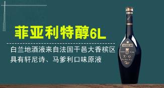 广东省汕头市胜图酒业有限公司
