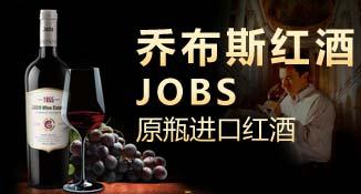 天津乔布斯国际贸易有限公司