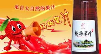 山东仙之梅杨梅酒业有限公司