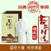 河南唐本记酒业有限公司(汾酒集团杏花村清酒全国总运营)