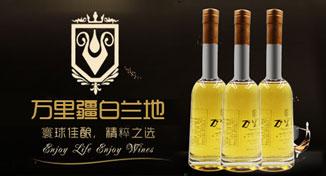 青岛红山林酒业有限公司