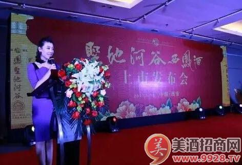 陕西电视台主持人刘芳主持本次活动图片
