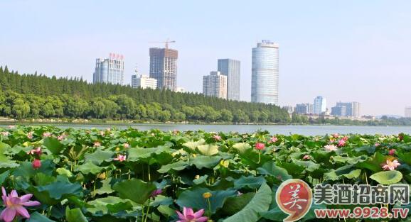 玄武湖位于南京市城中,是紫金山脚下的国家级风景区,中国最大的皇家