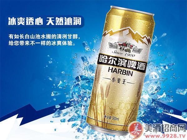 哈尔滨小麦王啤酒500ml(18听装)