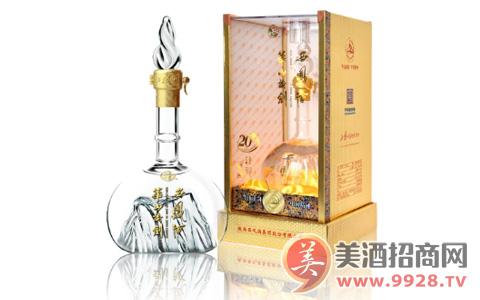 华山论剑西凤酒:年度回顾 同心共建慈善中国