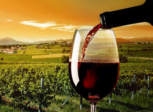 西班牙2017年出口葡萄酒总量达22.8亿升