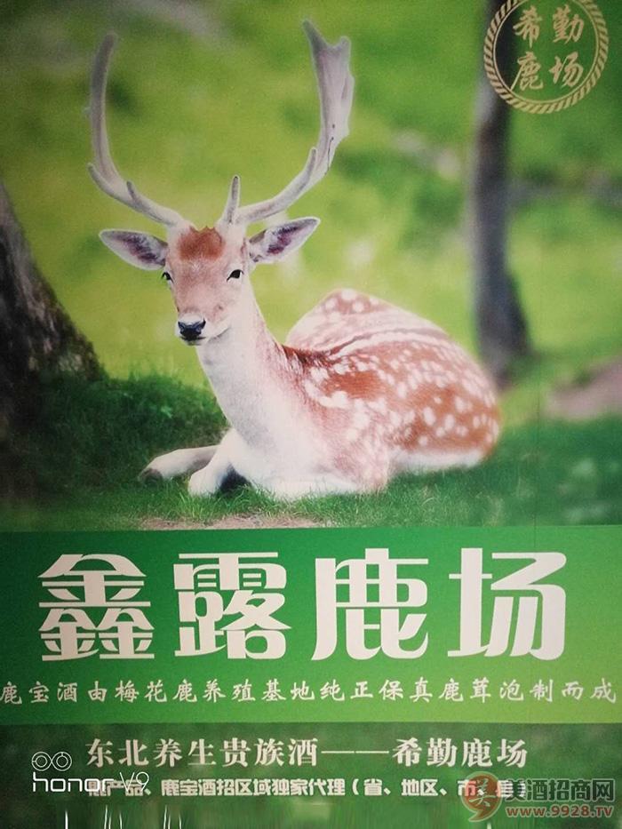双城市希勤乡鑫露鹿场招商政策