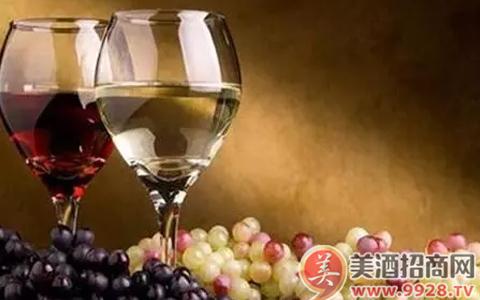 夏天为什么我们要喝白葡萄酒?